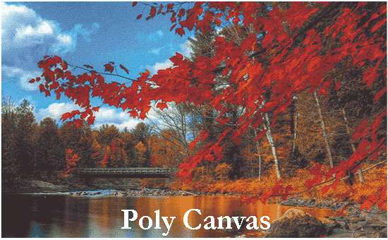Poly Canvas